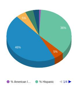 Otero Junior College Ethnicity Breakdown
