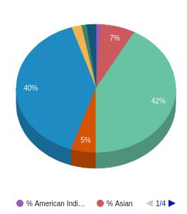 Elgin Community College Ethnicity Breakdown