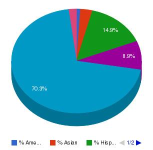 Naugatuck Valley Community College Ethnicity Breakdown