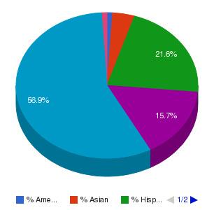 Hillsborough Community College Ethnicity Breakdown