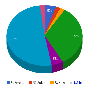 Charter College-Anchorage Ethnicity Breakdown