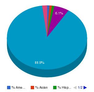 Highland Community College (Freeport) Ethnicity Breakdown