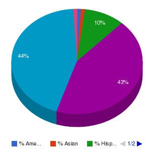 Prairie State College Ethnicity Breakdown