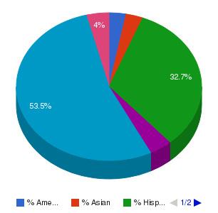 Pima Community College Ethnicity Breakdown