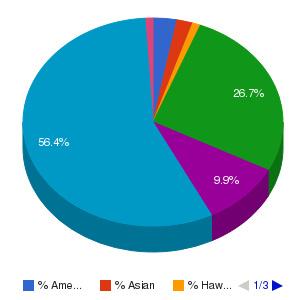 Rio Salado College Ethnicity Breakdown
