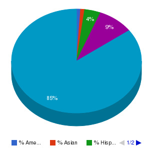 National Park Community College Ethnicity Breakdown