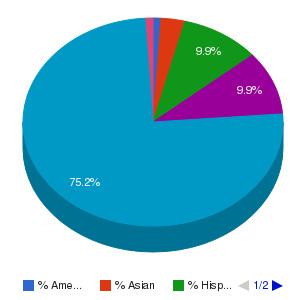 Quinsigamond Community College Ethnicity Breakdown