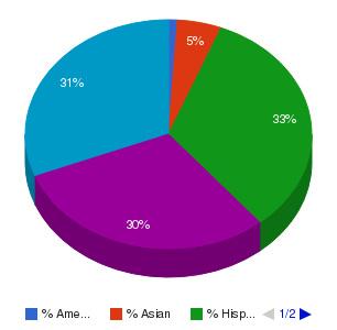 Union County College Ethnicity Breakdown