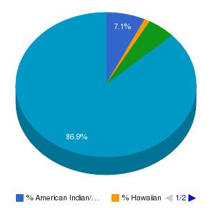 Uintah Basin Applied Technology College Ethnicity Breakdown