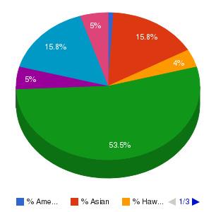 American Career College-Anaheim Ethnicity Breakdown