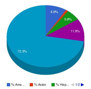 ITT Technical Institute-Tulsa Ethnicity Breakdown