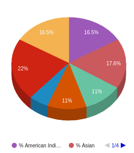 This chart display the percentage breakdown of students of all ethnic groups in testschool22.